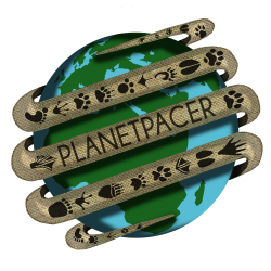 PlanetPacer